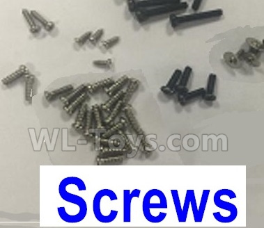 Wltoys-Q838-E Screws set-X450.0019,Wltoys Q838-E Parts,Wltoys Q838-E RC Drone Parts