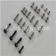 WLtoys V931 Screws Parts-(Total 23pcs),Wltoys V931 AS350 Parts